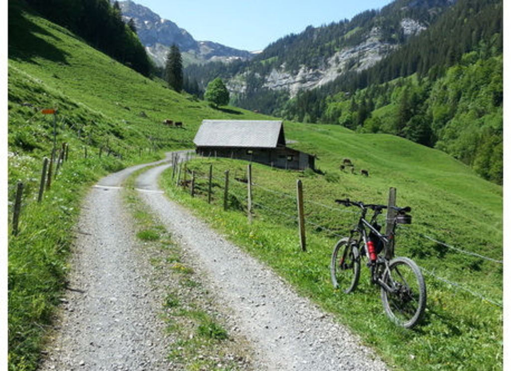 Mountain-biking in the Melchtal