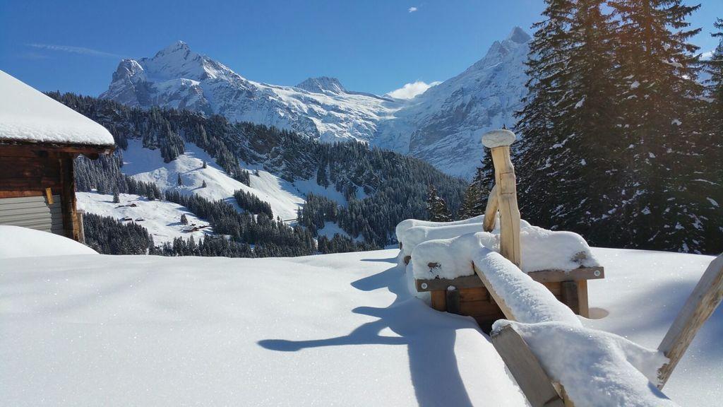 Bussalp --> Bort - Grindelwald
