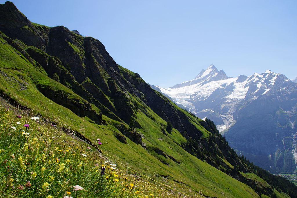 Grindelwald First --> Waldspitz
