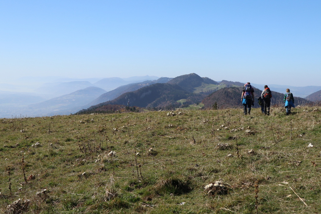 Hiking tour on the Jura mountains (5 km from our house)