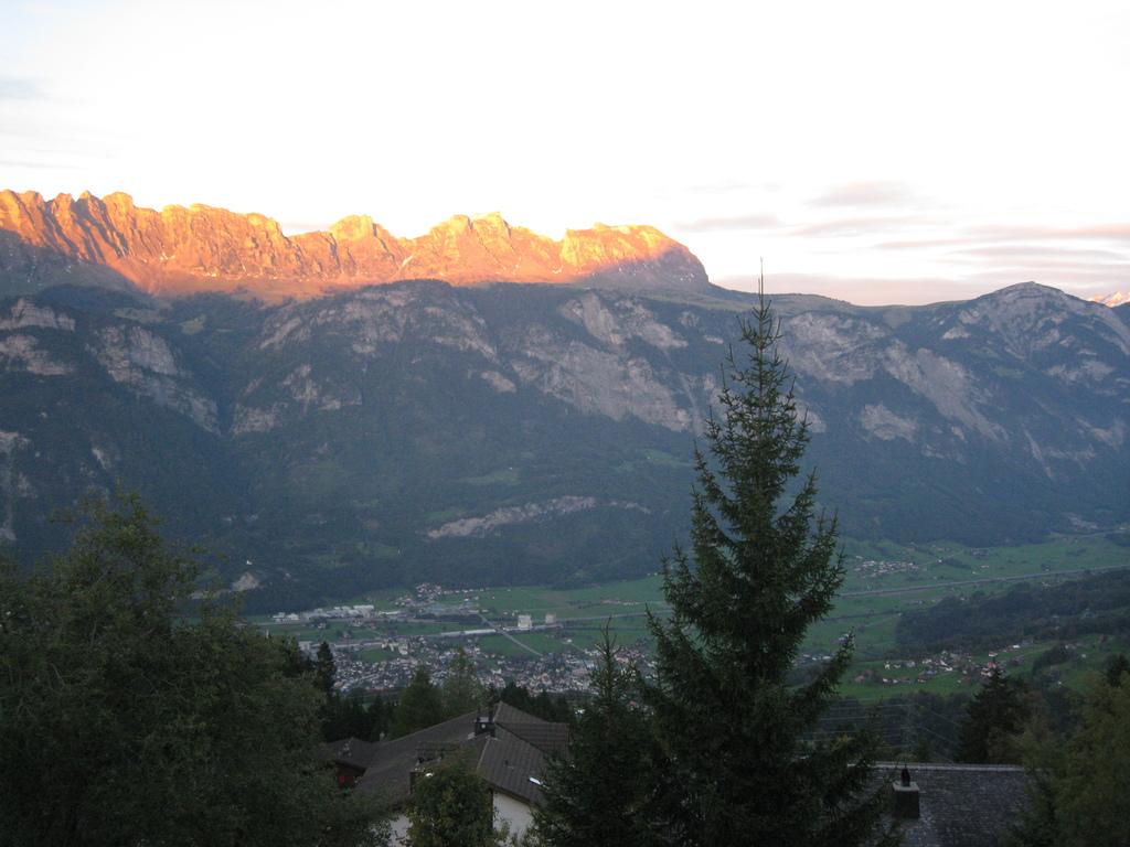 view (summer)
