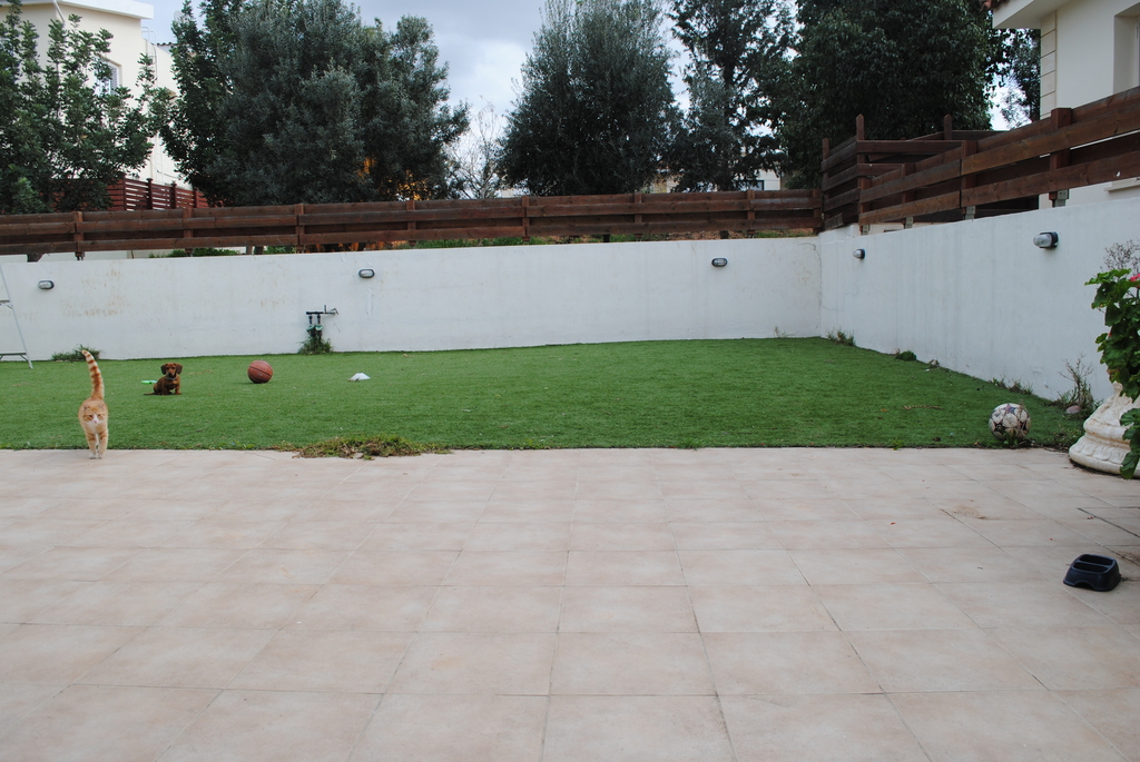 Backyard with AstroTurf. The yard is fenced all around.