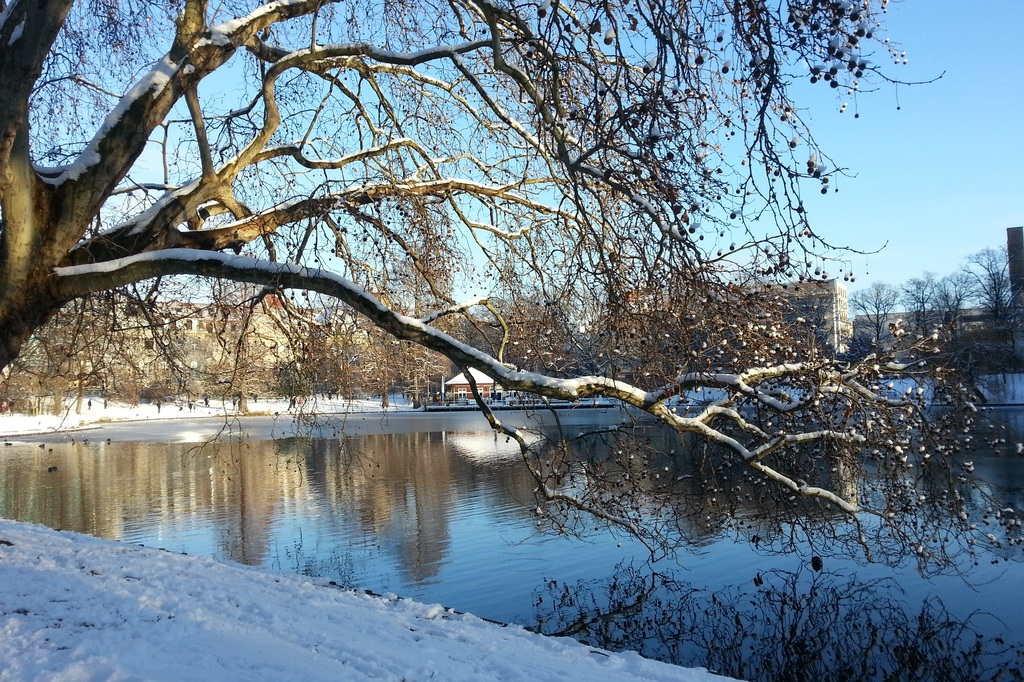 Lietzensee in winter (1.5 km)