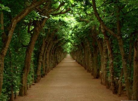 bayreuth - public park