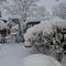 """Der Garten in einem """"richtigen"""" Winter"""