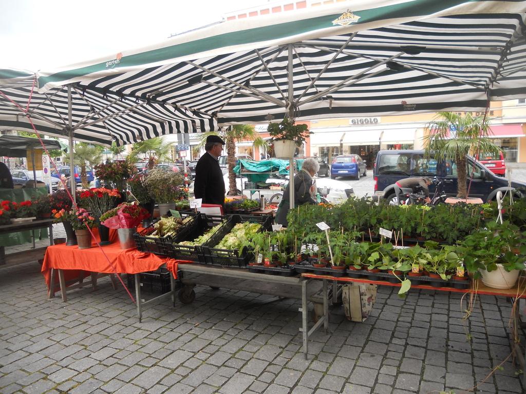 Markt auf dem Ludwigsplatz