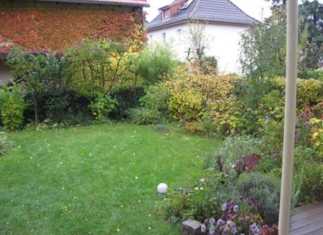 calm garden