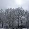 Arnimplatz in winter