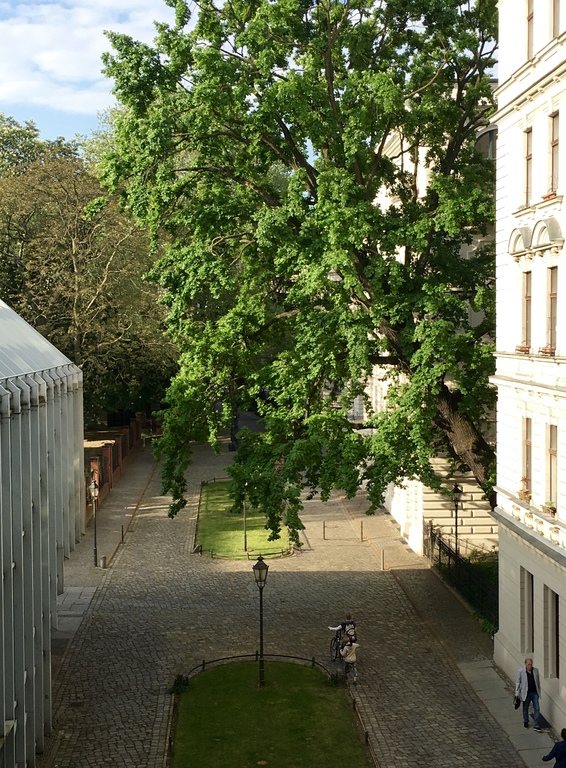 View to the inner courtyard
