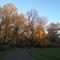 a park near our flat