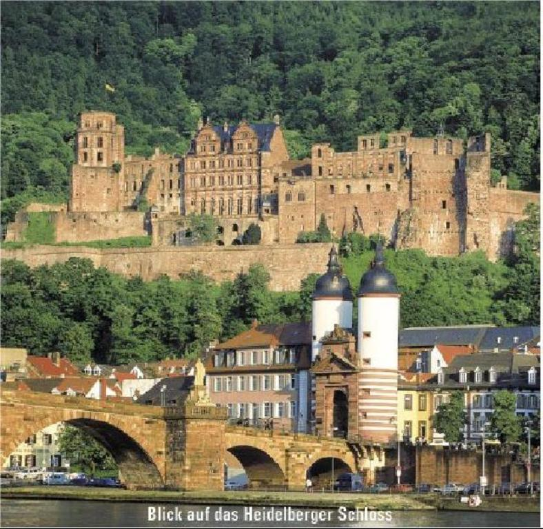 1 hours drive to the romantic city Heidelberg.