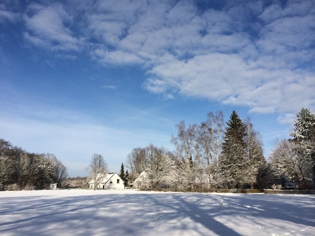 Gauting im Winter
