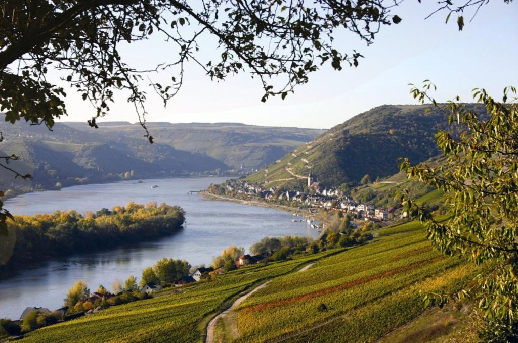 Rheintal - 30 min by car