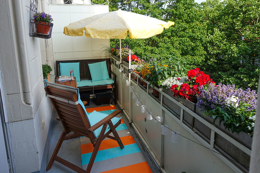 our blooming balcony