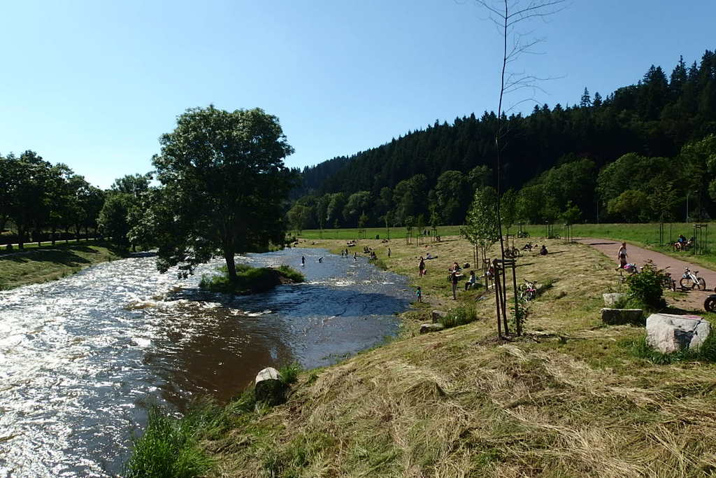 River Dreisam: New arranged area 3 km from the middle of FR