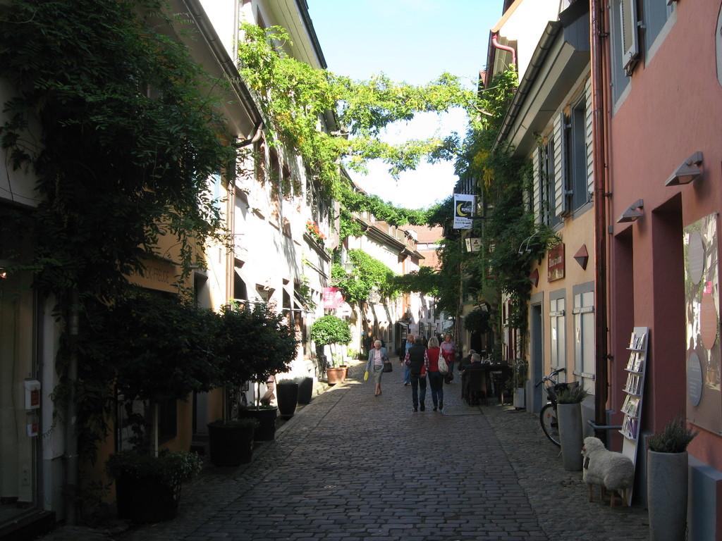 Freiburgs nice historical city.