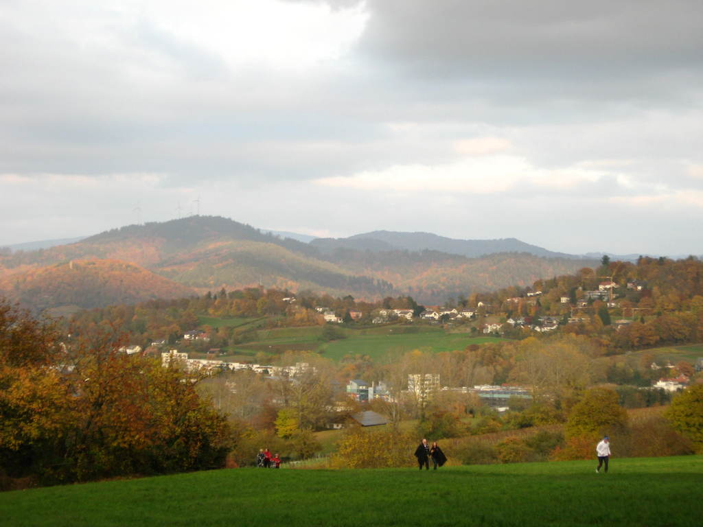 Walk 20 minutes from our home and you have this view at Freiburg.