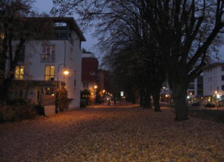 Our street: the Vaubanallee.