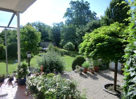 part of the garden in summer
