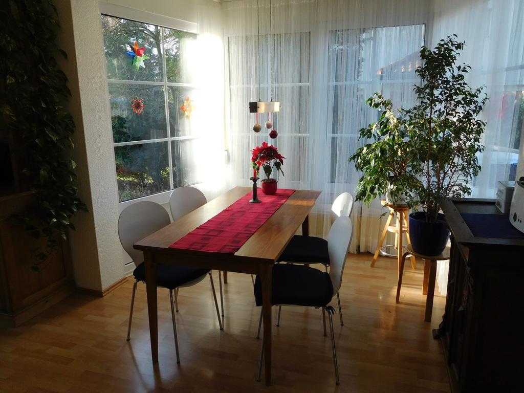 Living room - dinette