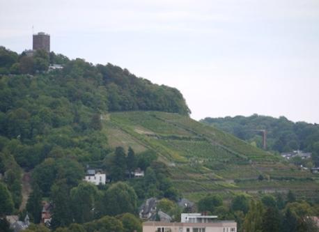 Durlach Turmberg
