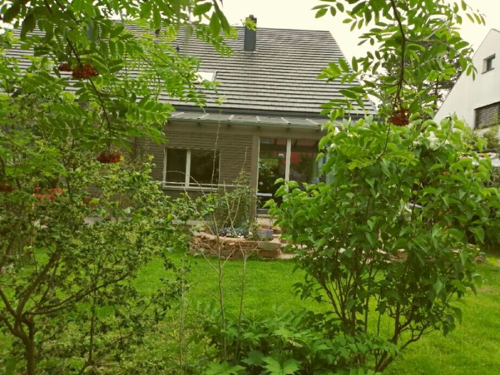 house from garden view