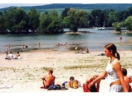 Rhine at Ingelheim camping site