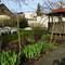 Garden with garden pavillon