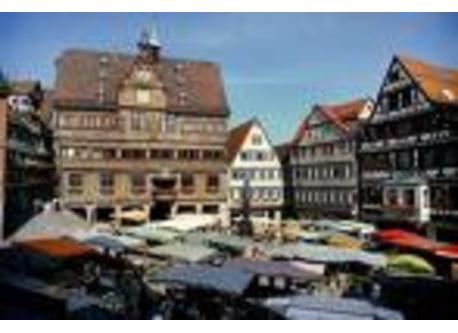 Tübingen city hall and market place