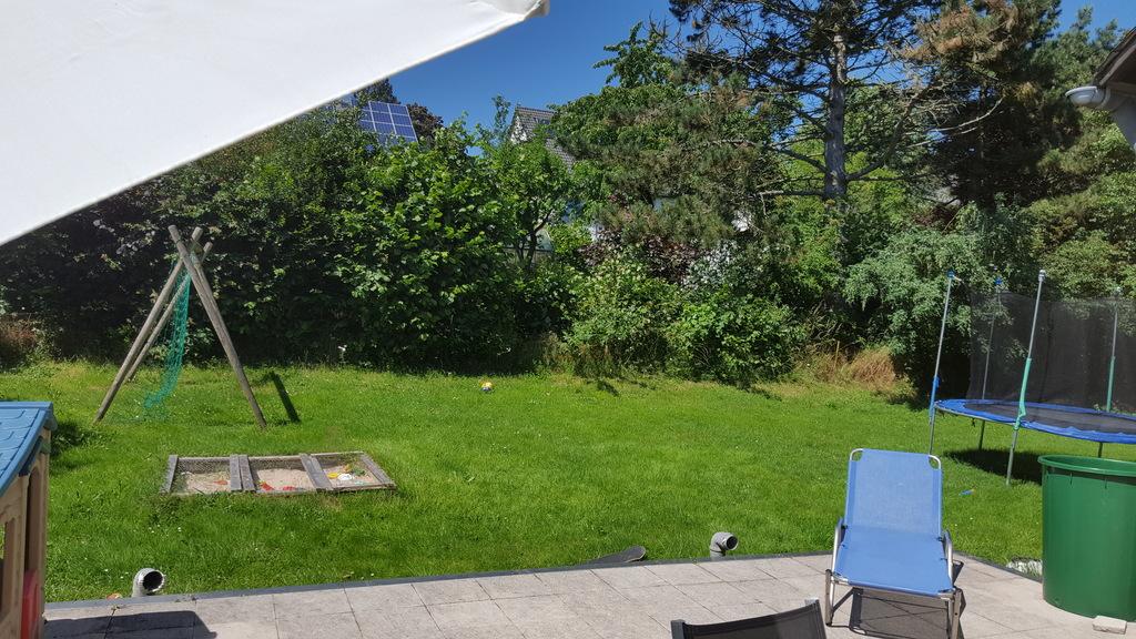 garden / jardín