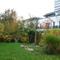 Der Garten im Herbst 2015 und die Nachbarhäuser / garden and neighbour houses 2015