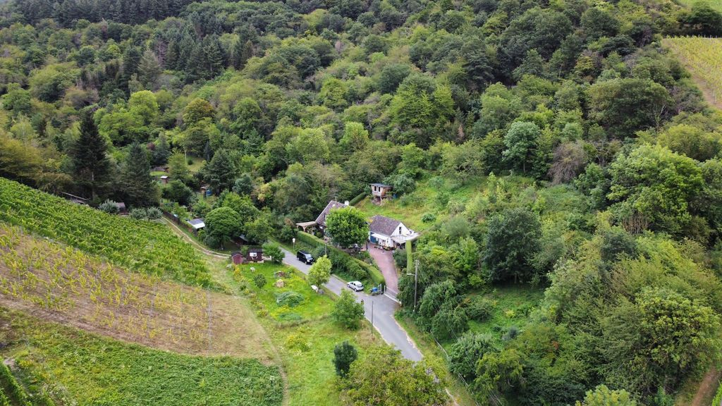 our street house and very green surrounding from above