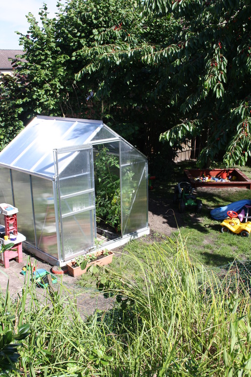 The green-house with tomatos and salat
