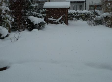 Notre jardin en hiver / Our garden in winter / Unser Garten im Winter