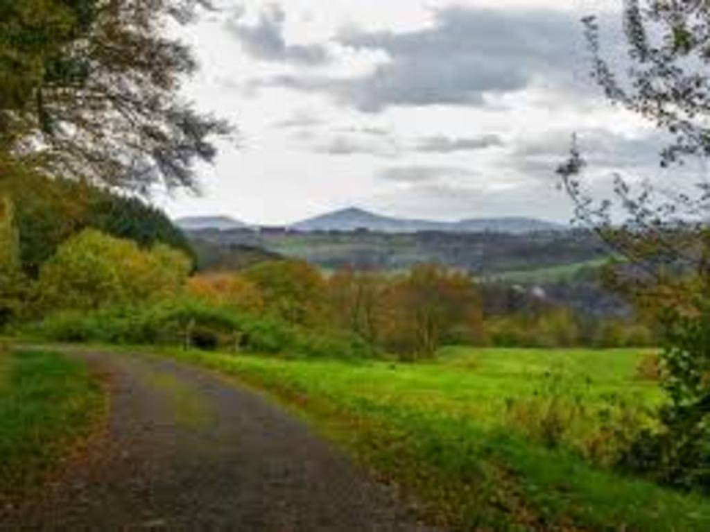 "View from outside our village towards ""Siebengebirge"" near Bonn (10 min. to walk)"