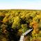 Hainich with treetop trail / Baumwipfelpfad