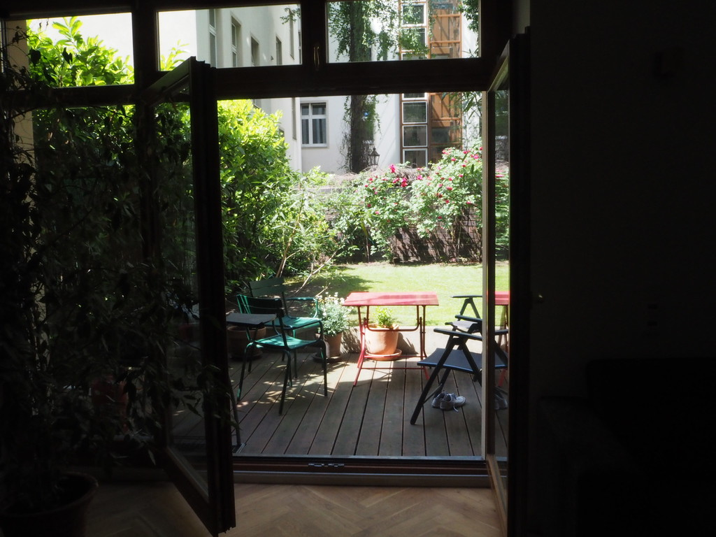 View from the living room to the garden