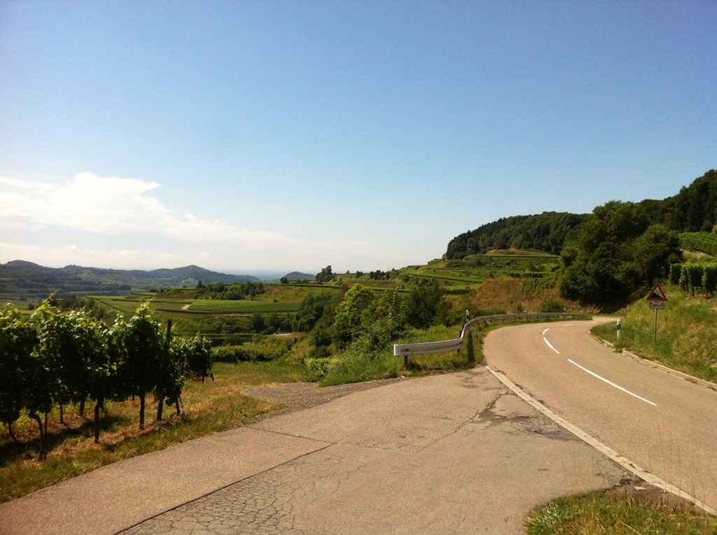 "famous wine growing region ""Kaiserstuhl"" (for the initiated cyclists: this is ""Texaspass"")"