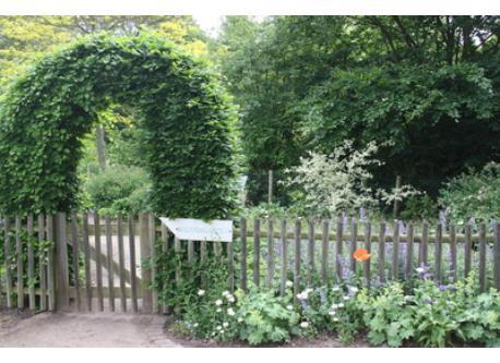 public village garden