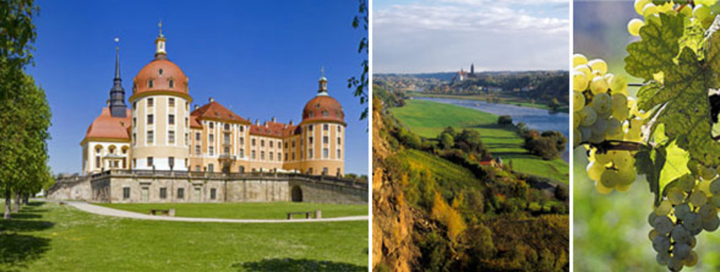 Castle Moritzburg (15km)