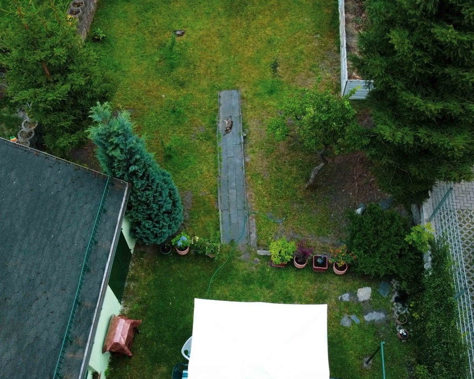 garden, top view. Photo taken with the drone.