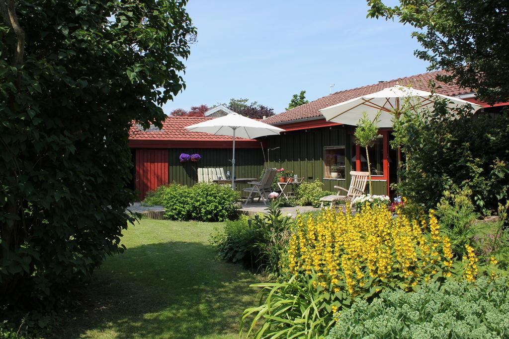 28. South Garden
