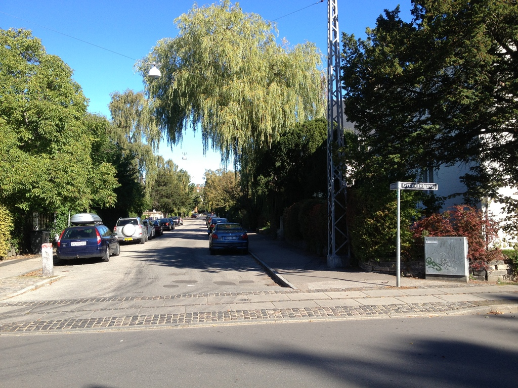 Our nice street.