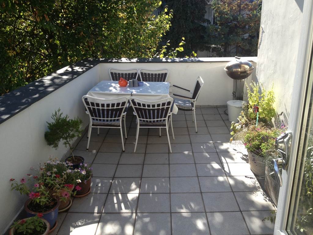 Our nice terrace overlooking the garden. You can have a barbecue if you like.