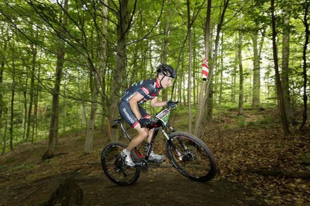 you can go mountain biking in our forrest