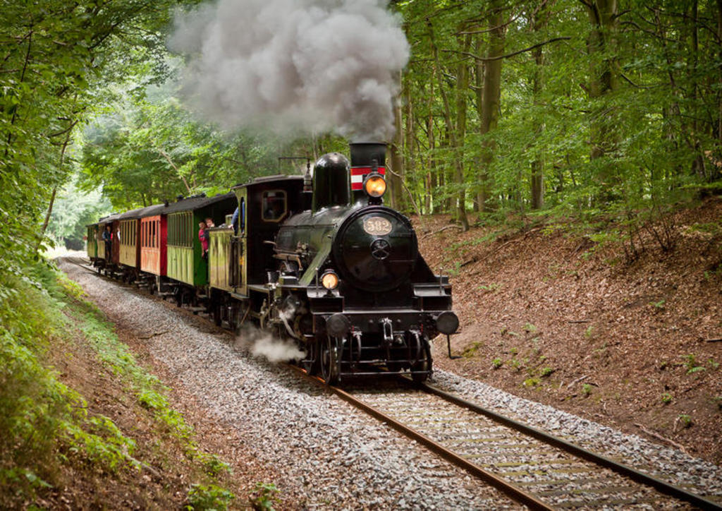 take a trip on the veteran train in our forrest