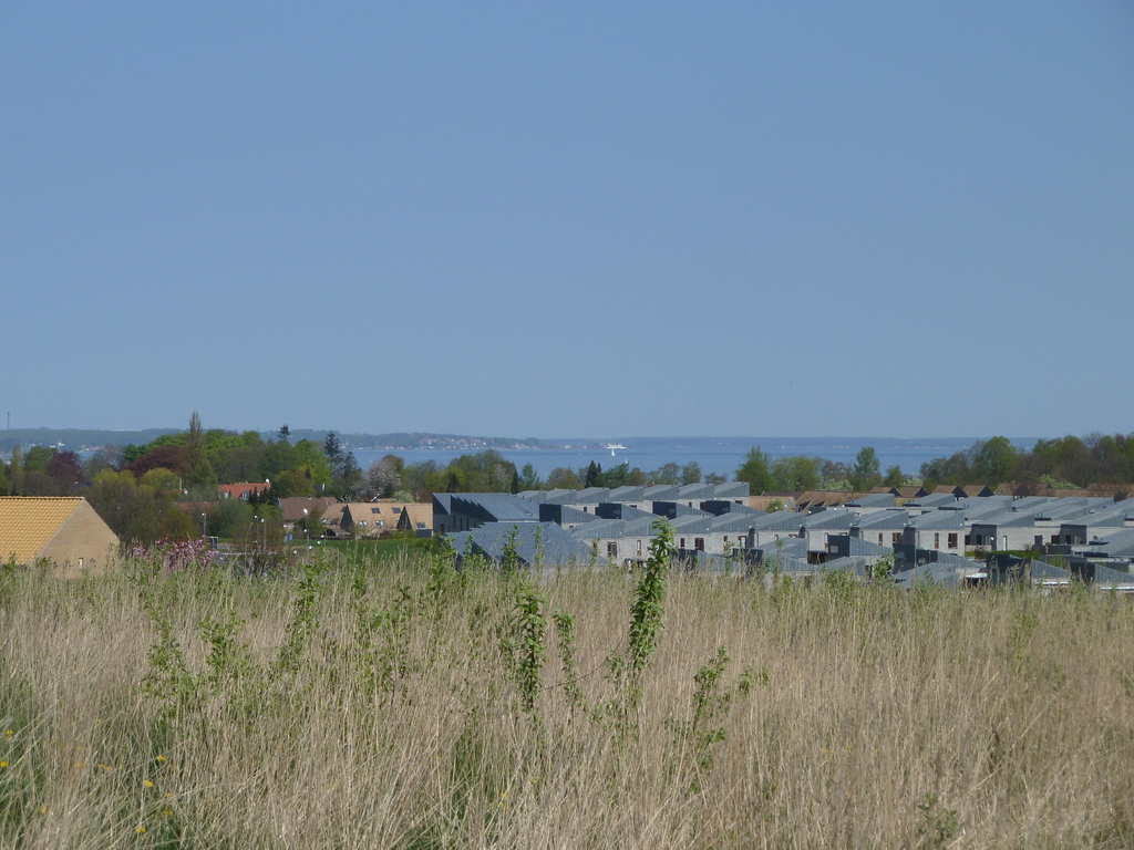 View to Oeresund from end of shared lawns