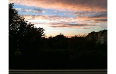 The Kings Garden in sunset.
