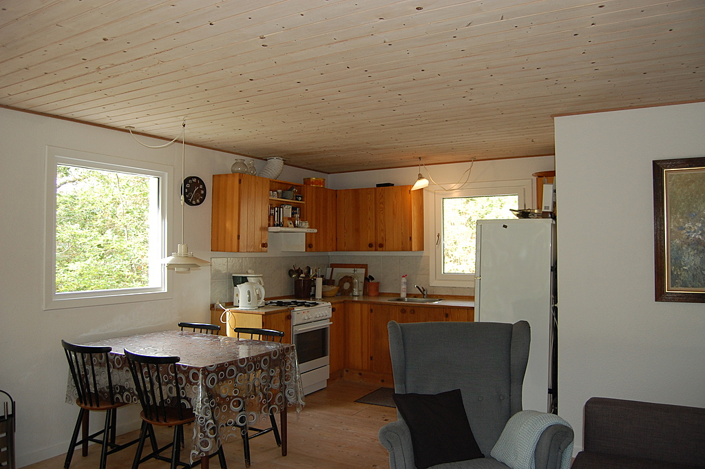 Summer cottage - the livingroom and kitchen