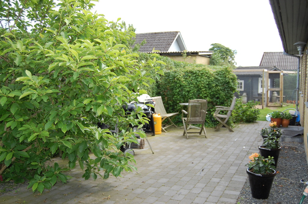 The back terrasse.